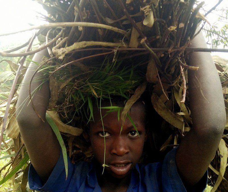 Exploring Rwanda: Past the Dark Into the Beautiful Present