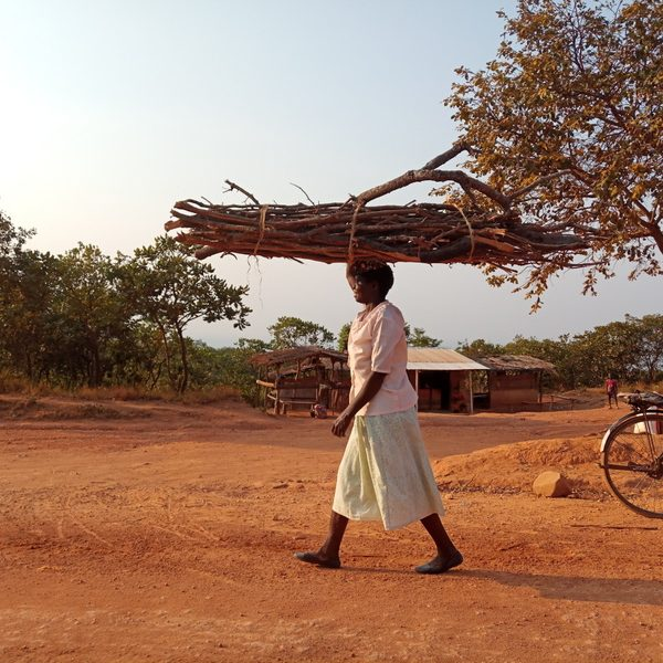 woman carrying pile of wood on  head