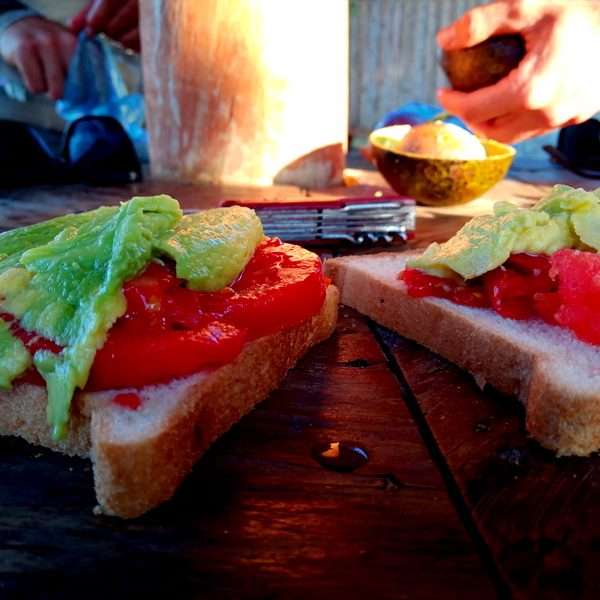 Avocado, Tomato sandwich