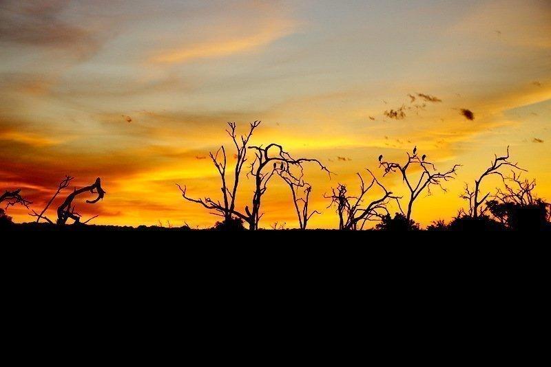 sunrise colors landscape